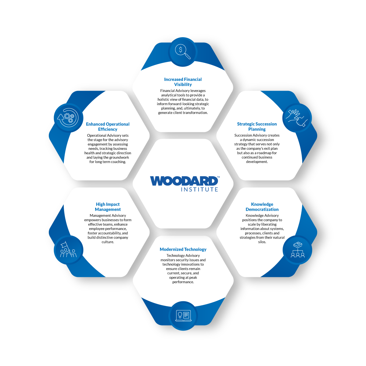 six hexagon sections with large hexagon in the middle of the pattern. The large middle section is labeled 'Woodard Institute' Decrease the screen size to see the text in this image below 960px.